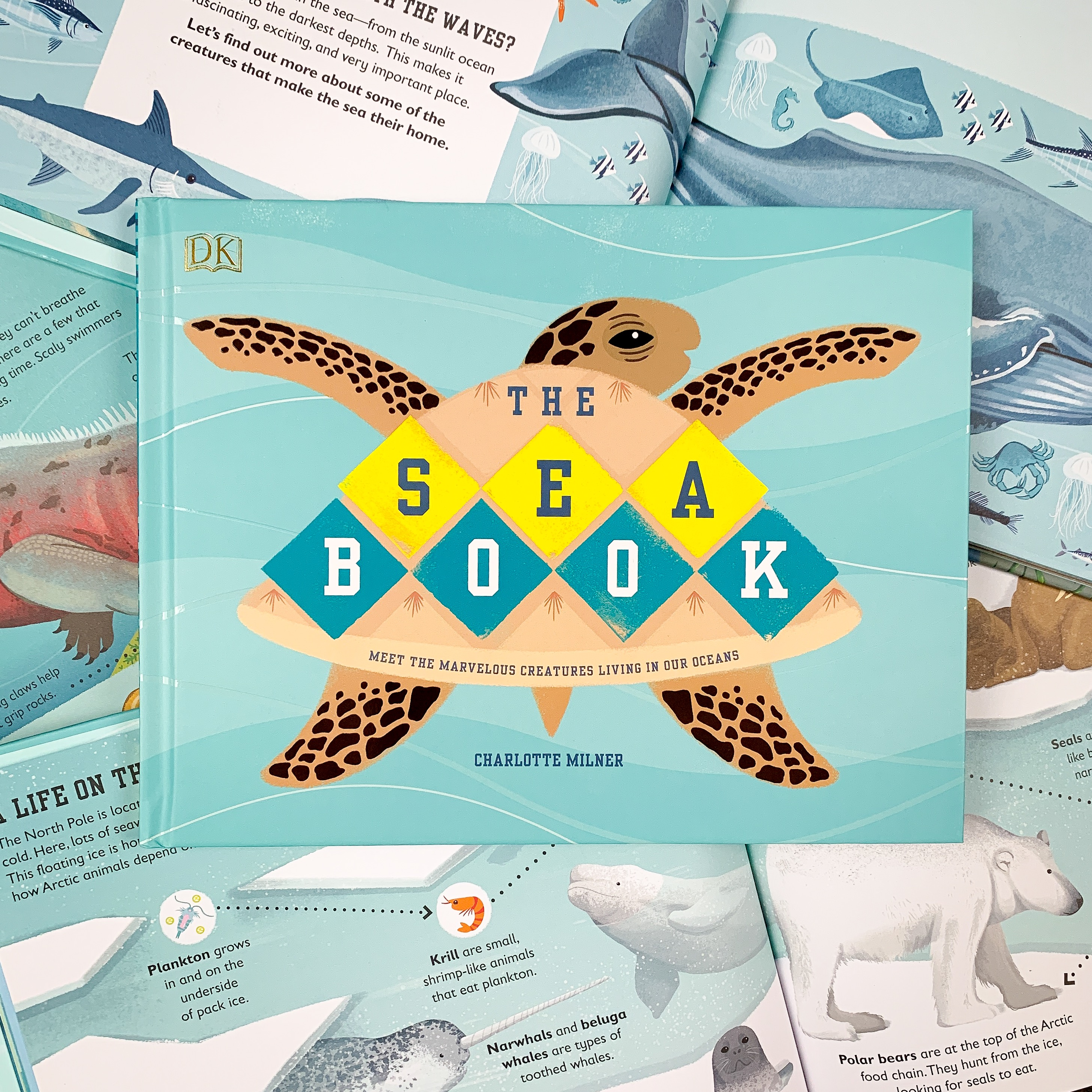 The Sea Book with spreads background