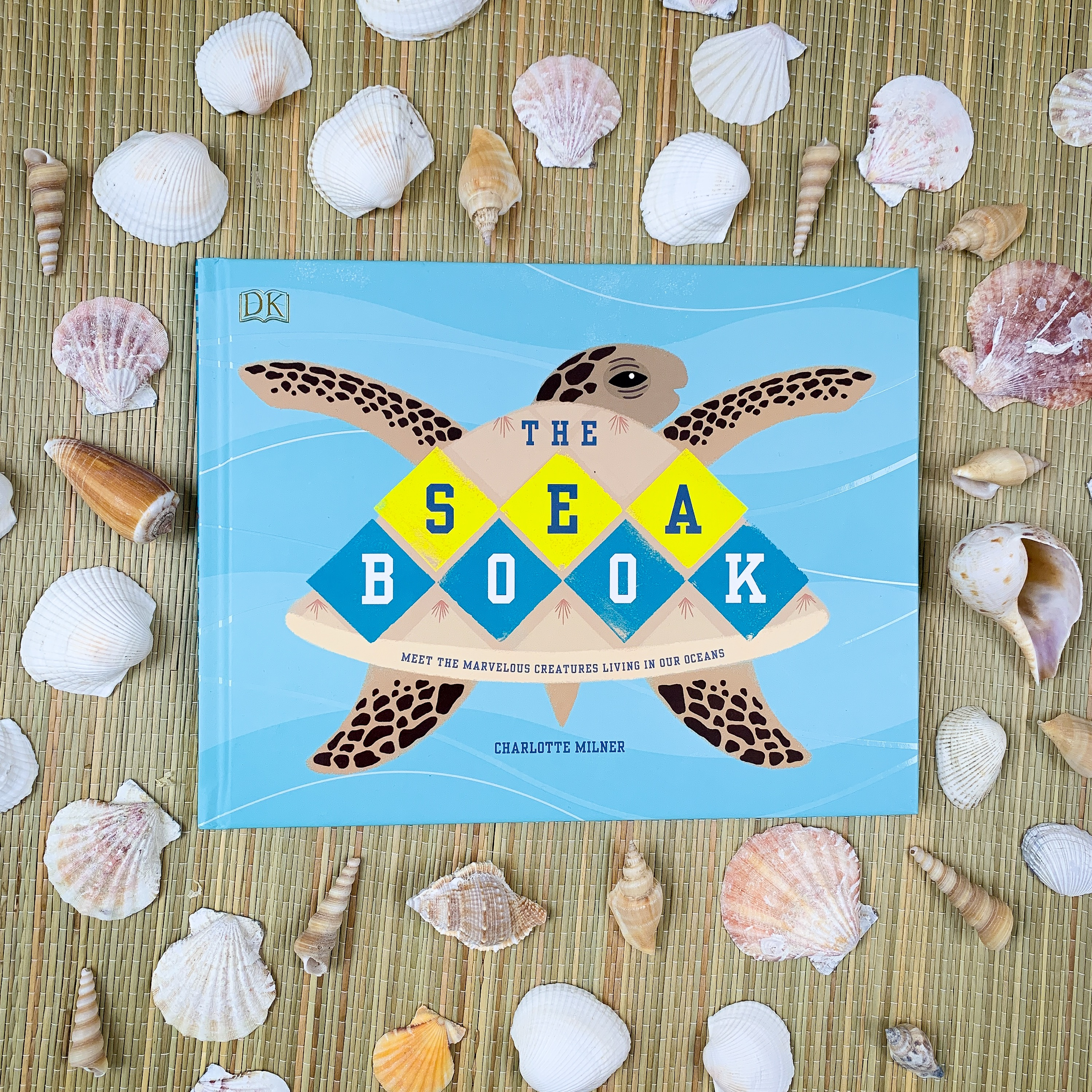 The Sea Book with shell background
