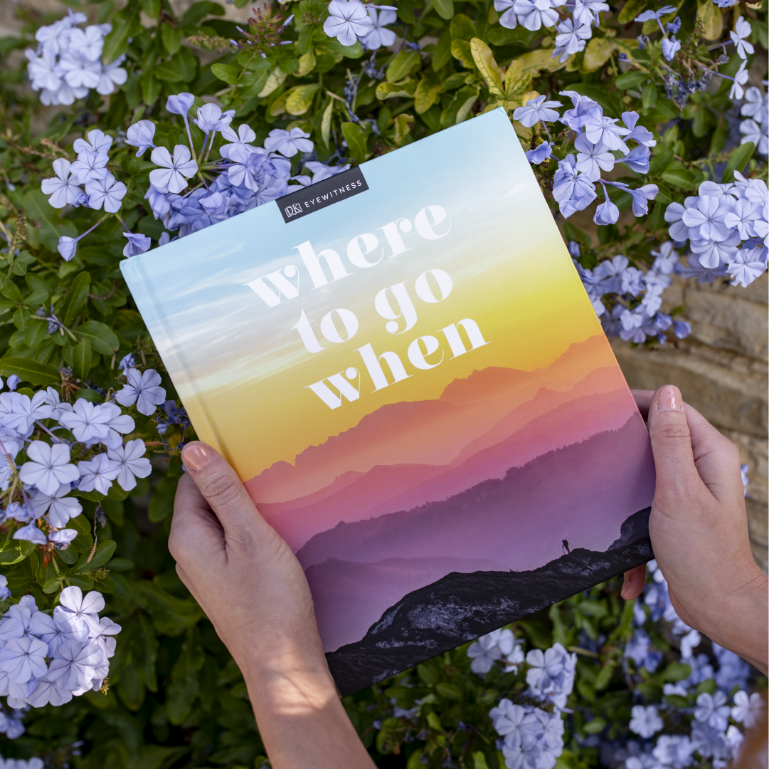 Where to go When cover with flowers in the background photo image