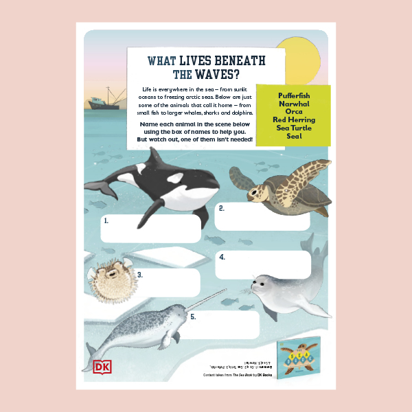 The Sea Book Activity Pack