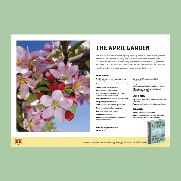 What To Do in Your Garden in April pdf