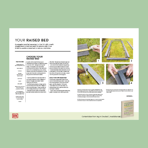 How to Build a Raised bed pdf