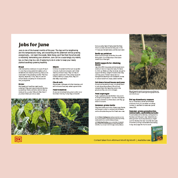 What to Do in your Allotment in June pdf