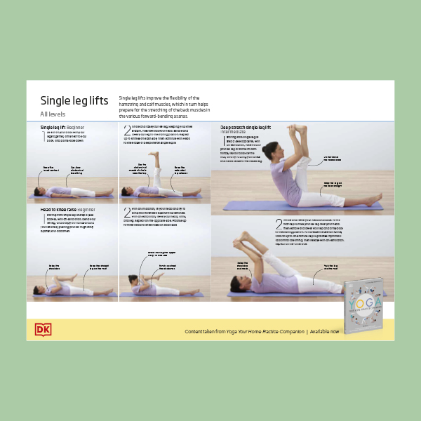 Yoga Single Leg Lifts pdf