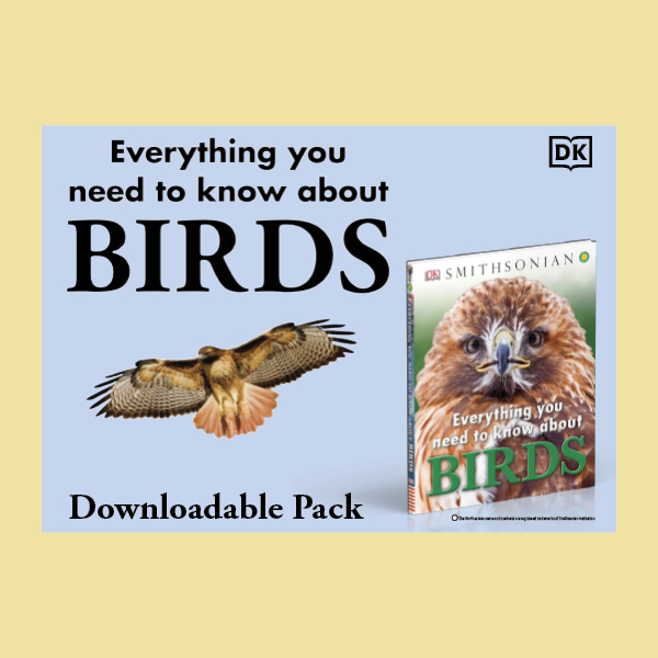 RDiscover Everything You Need to Know About Birds pdf