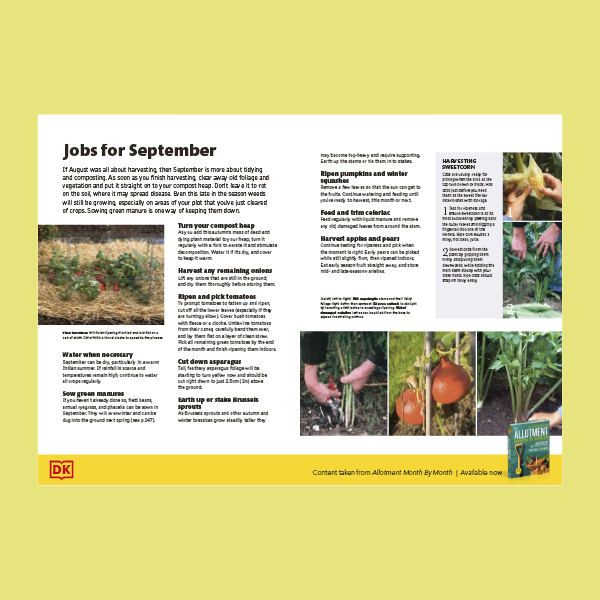 What to do in your allotment in September pdf