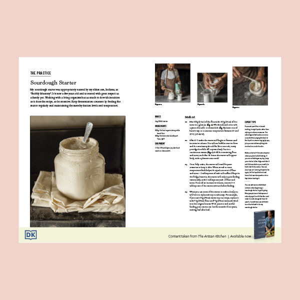 How to Make a Sourdough Starter pdf