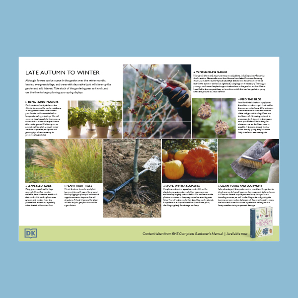 Late autumn and winter gardening pdf
