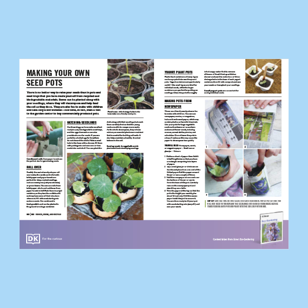 Making your own Seed Pots Sheet pdf