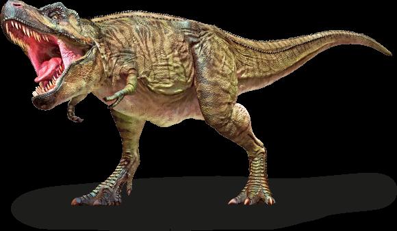 Dinosaurs & Prehistoric Life