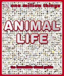 One Million Things Animal Life
