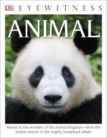 DK Eyewitness Books: Animal