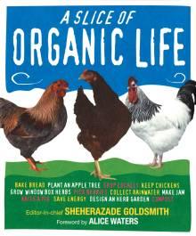 Slice of Organic Life