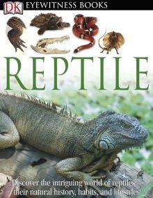 DK Eyewitness Books: Reptile