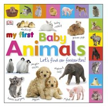My First Baby Animals Let's Find our Favourites!