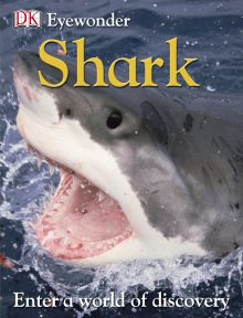 Eye Wonder: Sharks