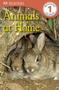 DK Readers L1: Animals at Home