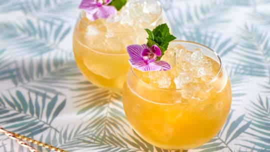 4 Tropical Margarita Recipes | Cocktail Recipes for Summer