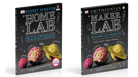Maker Lab wins STEM award