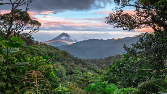 Why January is the best time to go to Costa Rica