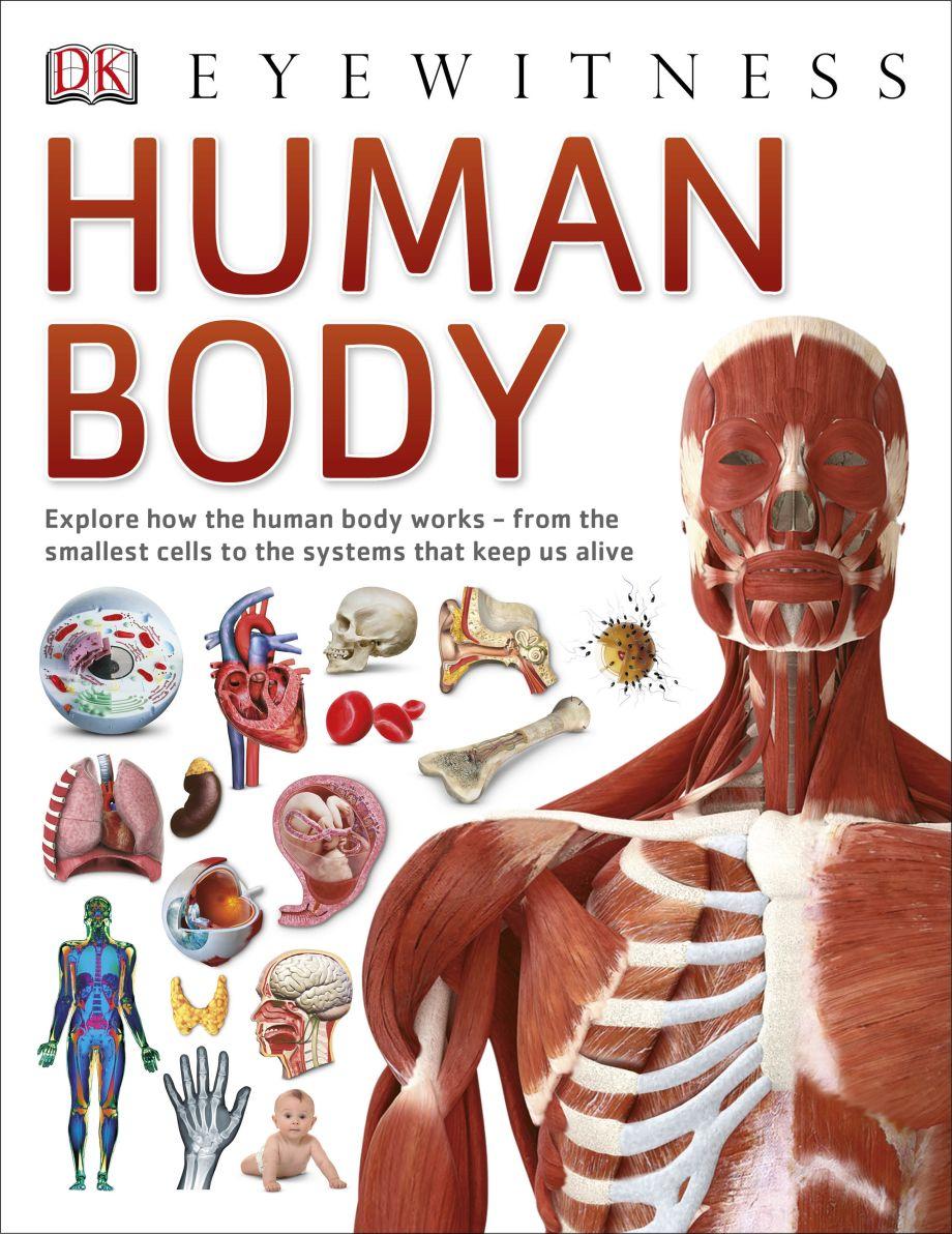Human Body | DK UK