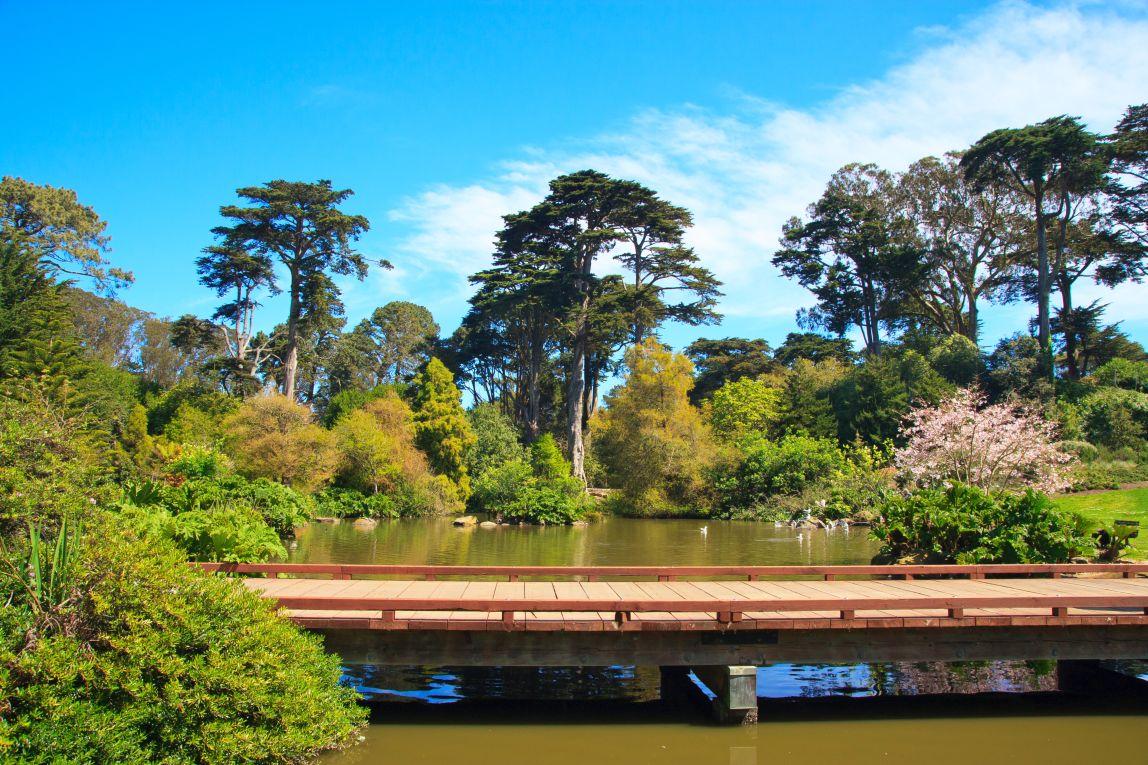 San Francisco Botanical Garden In The Golden Gate Park, San Francisco