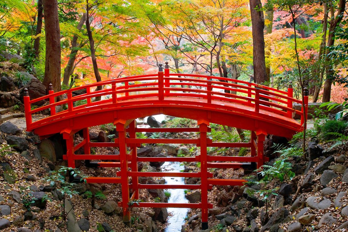 Japanese Garden Cherry Blossom Bridge tokyo's top 10 parks and gardens | dk eyewitness travel