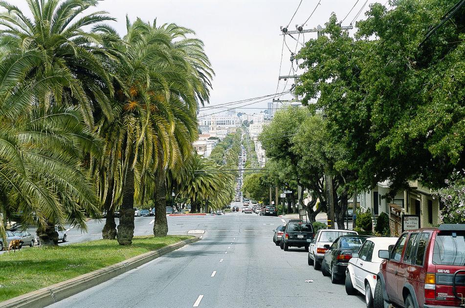 Dolores Street | San Francisco | DK Eyewitness Travel