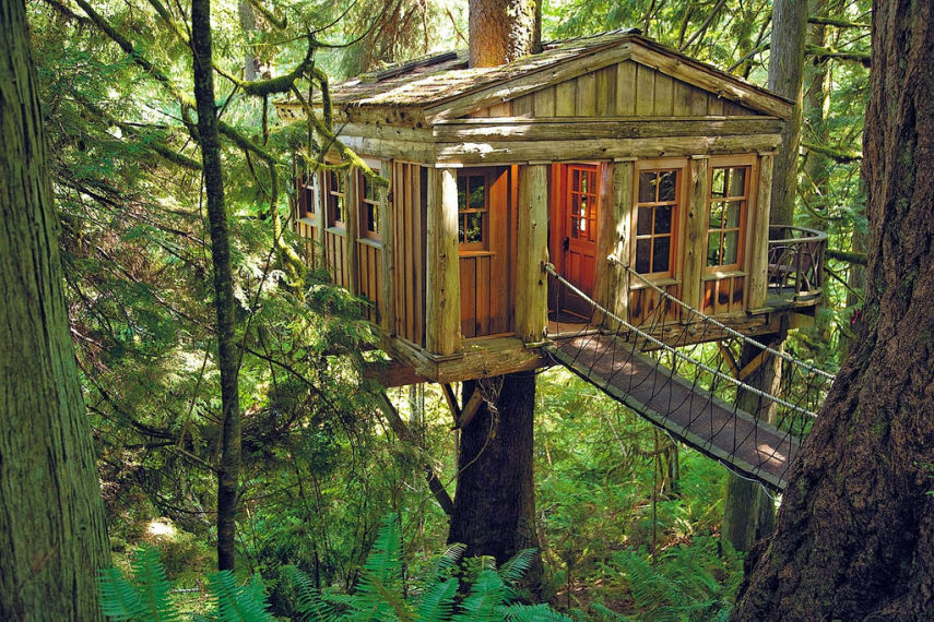 Treehouse Point Fall City Part - 44: Treehouse Point By Tony Guyton Via Flickr/CC-BY