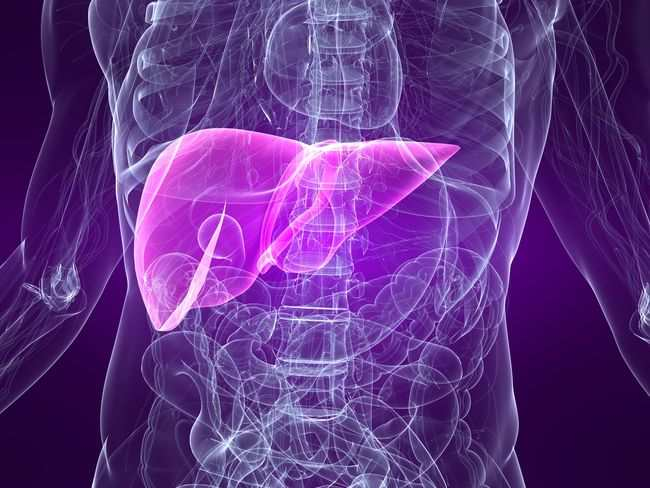 alodokter-hepatitis-b