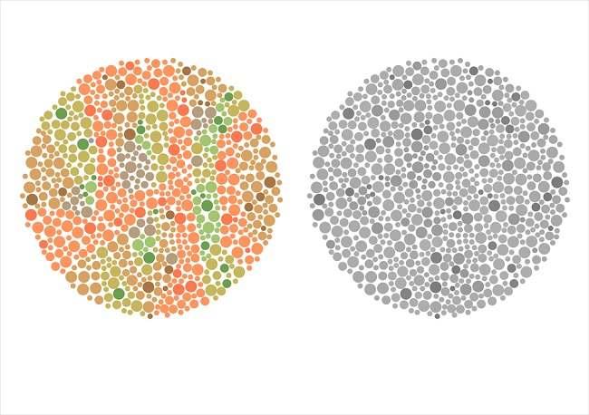 yuk kenali berbagai jenis tes buta warna - alodokter