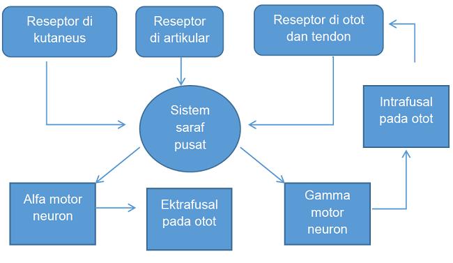 Diagram patofisiologi ankle sprain. Sumber: karya pribadi penulis.