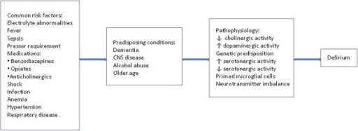 Patofisiologi delirium. Sumber: anonim, Openi, 2012.