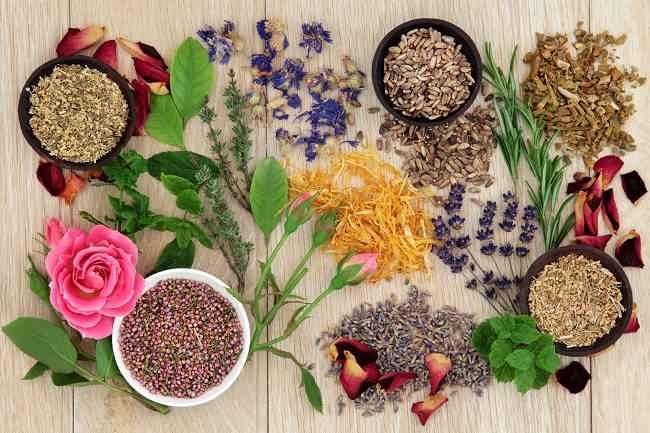 Mengkonsumsi Obat Herbal dengan Aman