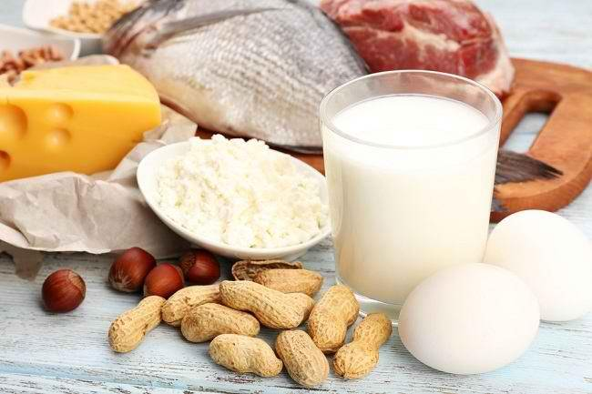 Pilihan Makanan Yang Mengandung Protein Tinggi Alodokter