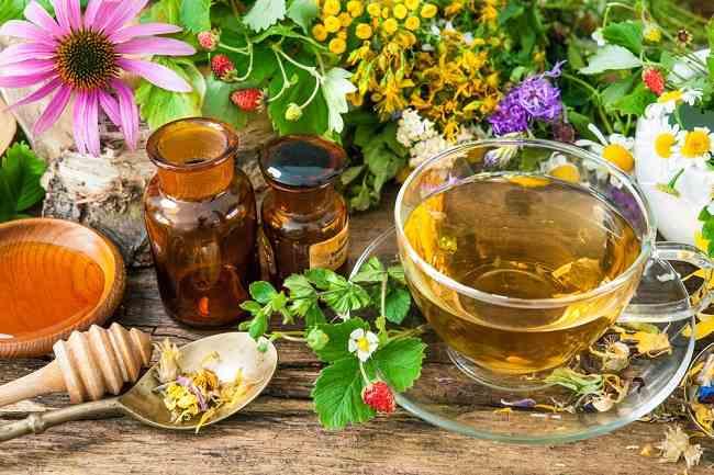 Cara Memilih Suplemen Herbal dengan Benar - Alodokter
