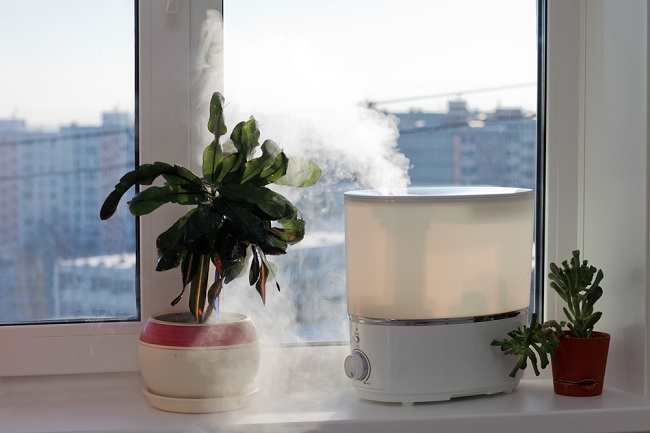 Ketahui Manfaat Humidifier untuk Kesehatan