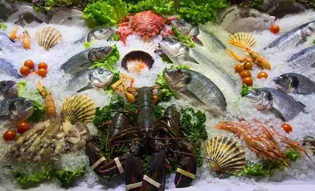 Kandungan Gizi Makanan Laut yang Baik untuk Kesehatan