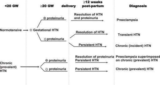 Klasifikasi hipertensi pada kehamilan. Sumber: anonim, Openi, 2013.