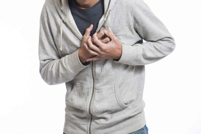 Embriologi Jantung Manusia Pdf