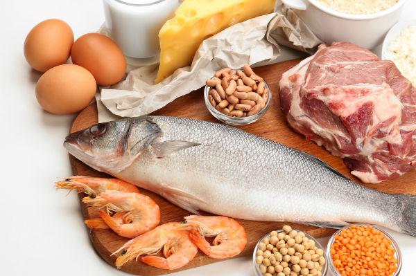 1582 อาหารโปรตีนสูง Resized
