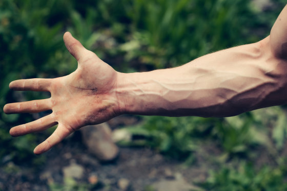 Yuk, Pelajari Perbedaan Arteri dan Vena di Sini - Alodokter