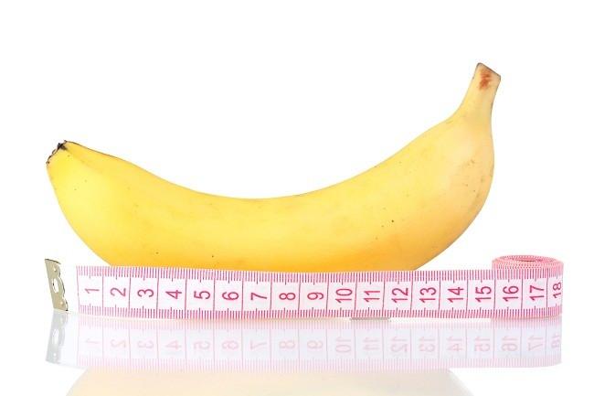 panjang penis normal
