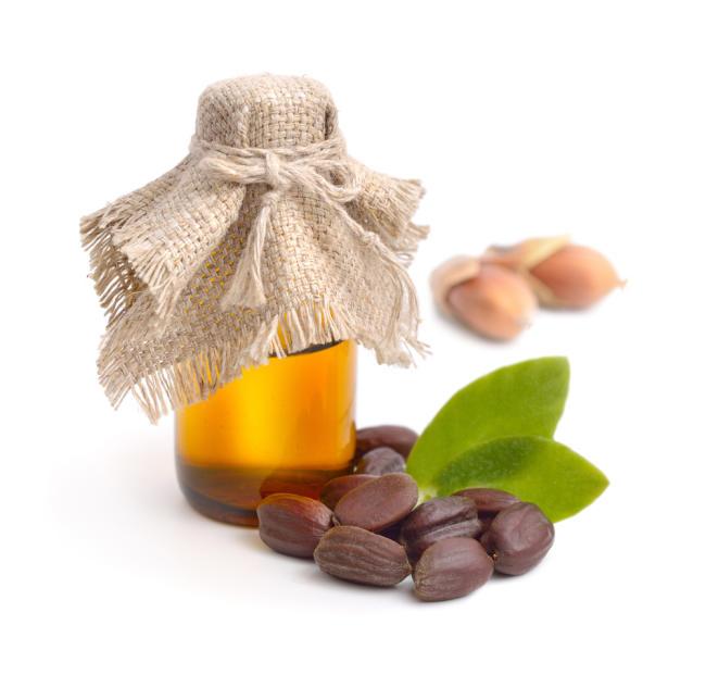 Manfaat Minyak Jojoba yang Perlu Diketahui - Alodokter