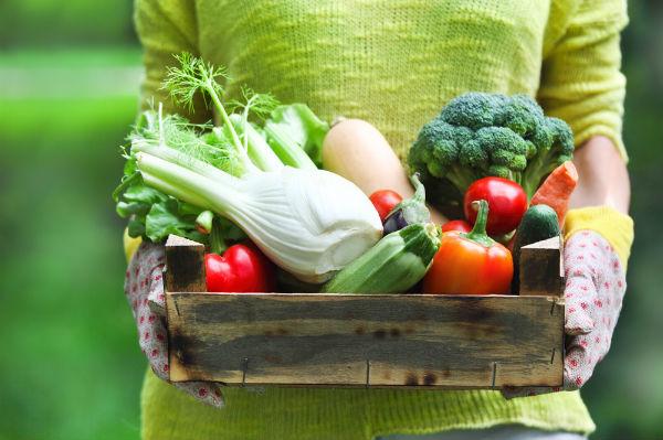 เกษตรอินทรีย์ อาหารปลอดสารพิษ เพื่อประโยชน์ต่อสุขภาพ