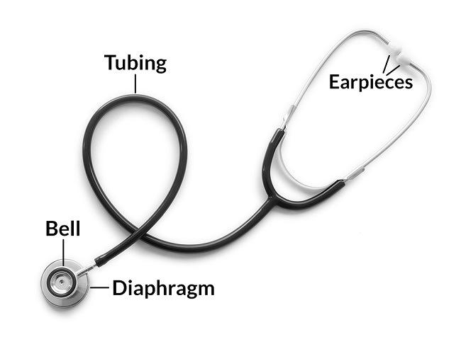 Mengenali Bagian Bagian Stetoskop Beserta Fungsinya Alodokter