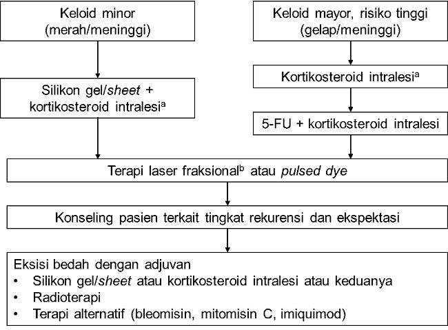 Gambar 1. Algoritma penatalaksanaan keloid berdasarkan UICRSM. a) Cryoterapi bersifat opsional. b) Laser ablatif fraksional adalah terapi laser inisial yang direkomendasikan. [1,2,9]