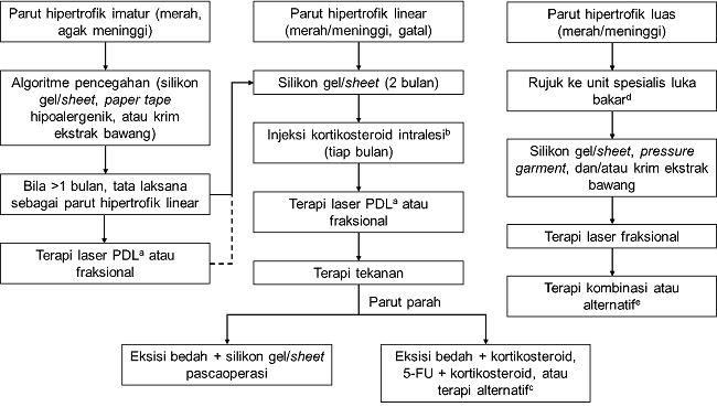 Gambar 1. Algoritma Penatalaksanaan Parut Hipertrofik Berdasarkan UICRSM. a) PDL (pulsed dye laser) lebih dipilih dibandingkan laser ablatif fraksional. b) Dosis kortikosteroid bervariasi tergantung area tubuh. c) Bleomisin atau mitomisin C intralesi, laser, dan cryotherapy. d) Perawatan luka akut lebih diprioritaskan daripada pencegahan ataupun manajemen parut. e) Untuk parut pasca luka bakar, terapi adjuvan mencakup terapi konservatif (misalnya masase parut dan fisioterapi), revisi bedah, atau terapi laser. [1,7,8]