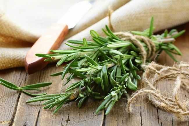 6 Manfaat Rosemary Bagi Kesehatan Tubuh - Alodokter