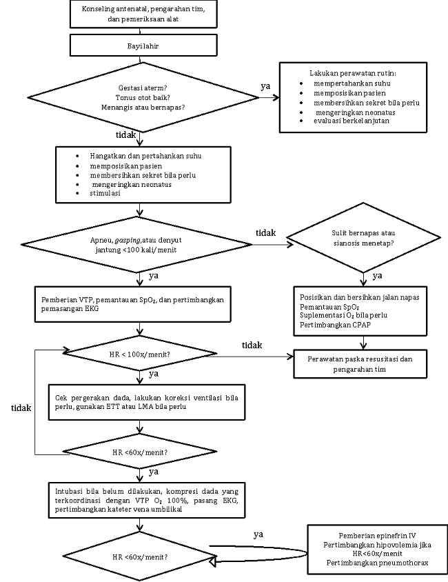 Gambar 1. Alur Resusitasi Neonatus diadaptasi dari guideline AHA 2015 (Sumber: dr. Giovanni Gilberta, 2019) [10]